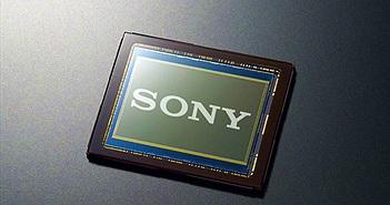 Sony cung cấp 40% số lượng cảm biến ảnh được bán ra trên toàn cầu năm 2014