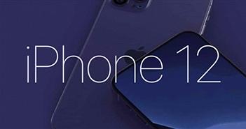 Đã có giá khởi điểm iPhone 12, rẻ bất ngờ