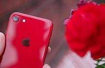 "Tim Cook tự tin ""iPhone SE nhanh hơn cả smartphone Android nhanh nhất"""