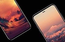 iPhone 8 mô hình so kích thước với smartphone đối thủ