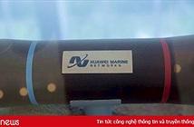 Huawei rút khỏi thị trường cáp quang biển sau lệnh cấm của Mỹ?