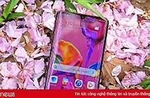 Vì sao một số mẫu điện thoại Android không có Play Store?