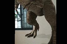 Hướng dẫn chụp ảnh cùng khủng long nhờ công nghệ AR trên smartphone