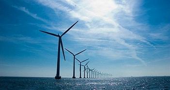 Năng lượng gió hiện nay đã rẻ hơn cả điện hạt nhân
