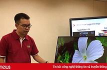 Viewsonic lập chiến lược phát triển tại thị trường Việt Nam và chiếm thị phần thiết bị trình chiếu