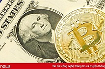 Giá Bitcoin hôm nay 3/8: Thị trường lao dốc, nhà đầu tư tháo chạy