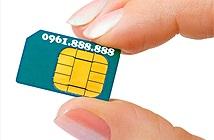 Viettel đấu giá SIM lục quý 8, ủng hộ trẻ em nghèo mắc bệnh tim bẩm sinh