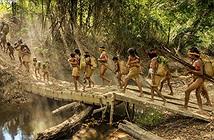 Cuộc sống của bộ lạc ít người nhất hành tinh ở rừng rậm Amazon