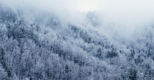 Mùa Đông năm nay đến sớm, lạnh hơn 5 năm gần đây