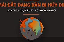 Trái đất đang dần bị hủy diệt do chính sự cẩu thả của con người