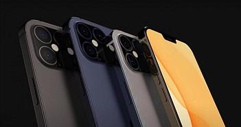 iPhone 12 giá rẻ sẽ có bộ nhớ 64GB với 6 màu bắt mắt