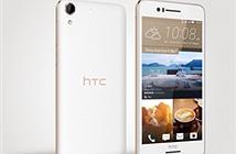 HTC ra mắt Desire 826 Dual SIM, camera tự sướng 13MP, giá 6,4 triệu đồng