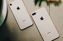 iPhone 8/8 Plus chính hãng đã cho đặt mua, giá khởi điểm 20,99 triệu đồng