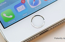 Cựu quản lý Hon Hai ăn cắp 5.700 chiếc iPhone
