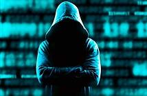 Chuyện thật như đùa: Hack 50.000 máy in để kêu gọi... đăng ký kênh video