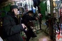 Rùng mình chó Ngao Tây Tạng đột nhiên quay lại cắn chủ