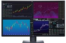 Dell ra mắt màn hình máy tính 42.5 inch 4K, giá 24 triệu đồng