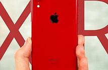 """Mua iPhone Xr đỏ hay Galaxy S9+ Vang đỏ """"chất"""" hơn?"""