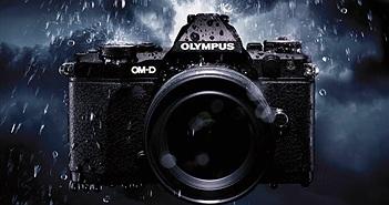 So sánh độ chi tiết giữa ảnh 16MP, 40MP và 63MP chụp từ chiếc Olympus E-M5 mark II