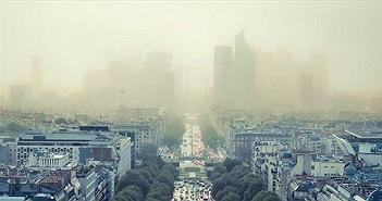 Nguy hiểm khi bụi mịn đi thẳng vào phổi, phải làm gì để làm sạch phổi ngay hôm nay?