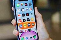 Đề phòng iPhone thiếu hụt do Covid-19, chọn iPhone sao cho chất?