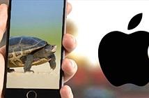 Nguyên nhân nào làm smartphone cũ chạy ngày càng như rùa bò?