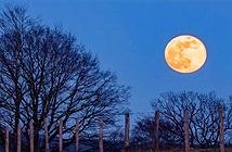 Việt Nam sắp đón siêu trăng thứ 2 trong năm 2020
