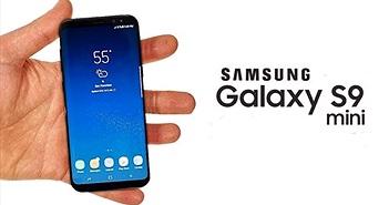 Samsung Galaxy S9 mini lộ diện với Snapdragon 660, RAM 4 GB