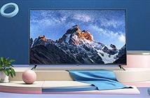 Xiaomi ra mắt 2 TV 75 và 60 inch, giá từ 280 USD