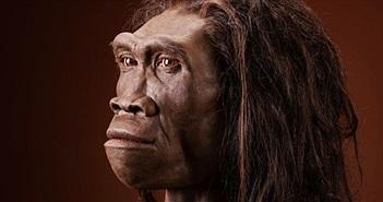 Phát hiện hóa thạch lâu đời nhất liên quan đến loài người