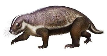 """Hình dạng kỳ dị của loài """"quái thú điên rồ"""" 66 triệu năm tuổi"""
