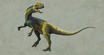 Tìm thấy dấu vết khủng long kỷ Jura ở Tây Nam Trung Quốc