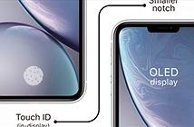 iPhone sẽ tích hợp Touch ID vào màn hình