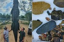 Mổ bụng cá sấu khổng lồ, bàng hoàng nhìn thứ bên trong