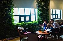 Vì sao giới startup Việt hào hứng với mô hình co-working mới như Toong?