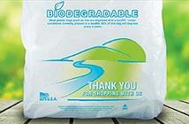 Túi tự hủy sinh học có ích cho môi trường thế nào?
