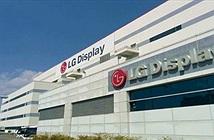 LG khánh thành nhà máy sản xuất tấm nền OLED, giá TV sẽ giảm?