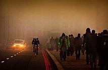 Ô nhiễm không khí làm gia tăng tai nạn giao thông