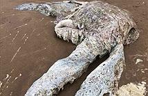 Quái vật khổng lồ trôi dạt lên bãi biển, dân làng hoảng loạn tháo chạy