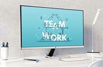 ViewSonic ra mắt dòng sản shẩm màn hình VX81 Series: thiết kế mới, giá từ 3,7 triệu