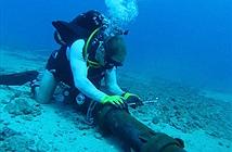 Đứt cáp quang biển AAG tại đoạn rẽ vào Vũng Tàu