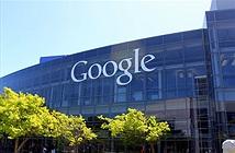 Google làm Microsoft bẽ mặt khi công bố lỗi Windows 8.1