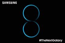 Samsung không từ bỏ dòng Note: Note 8 sẽ có màn hình 4K