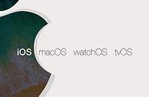 Tất cả thiết bị Mac và iOS cũng bị ảnh hưởng bởi lỗ hổng chipset Intel