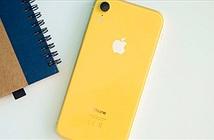 iPhone 9 Plus sẽ trình làng vào cuối năm nay
