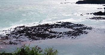 Phát hiện miệng núi lửa cổ trăm triệu năm ở Quảng Ngãi