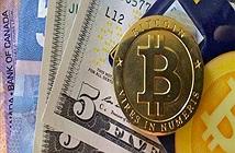 Thuỷ triều đỏ bao trùm tiền ảo, cuốn phăng 212 tỷ USD