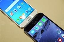 Samsung phản pháo vụ Galaxy S6 copy iPhone 6