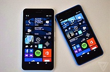 Microsoft giới thiệu bộ đôi Lumia 640 và 640 XL