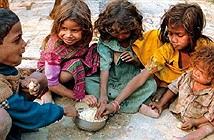 Đến 2050, biến đổi khí hậu sẽ khiến nửa triệu người chết vì đói